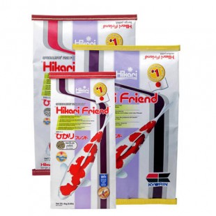 Hikari - Friend - Medium